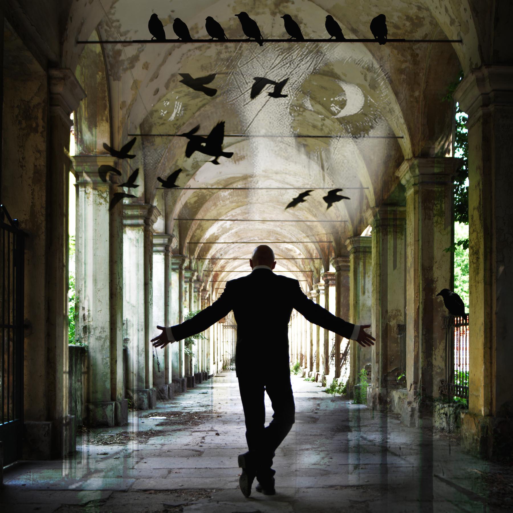 Asylum_Cover_Antonio-Argus